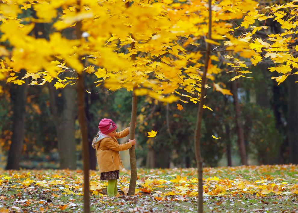 Podzim 2013 ve světe