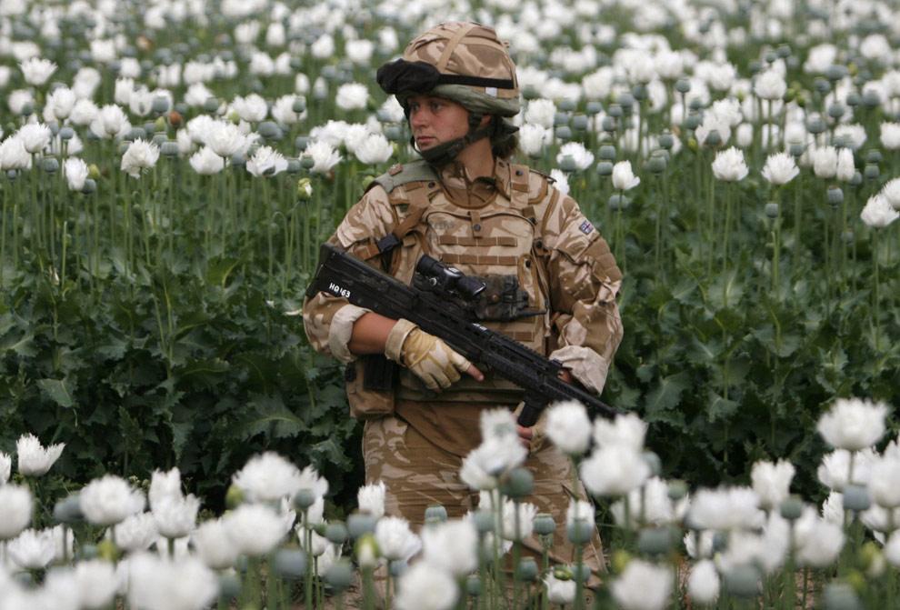 a36 18453883 Афганистан