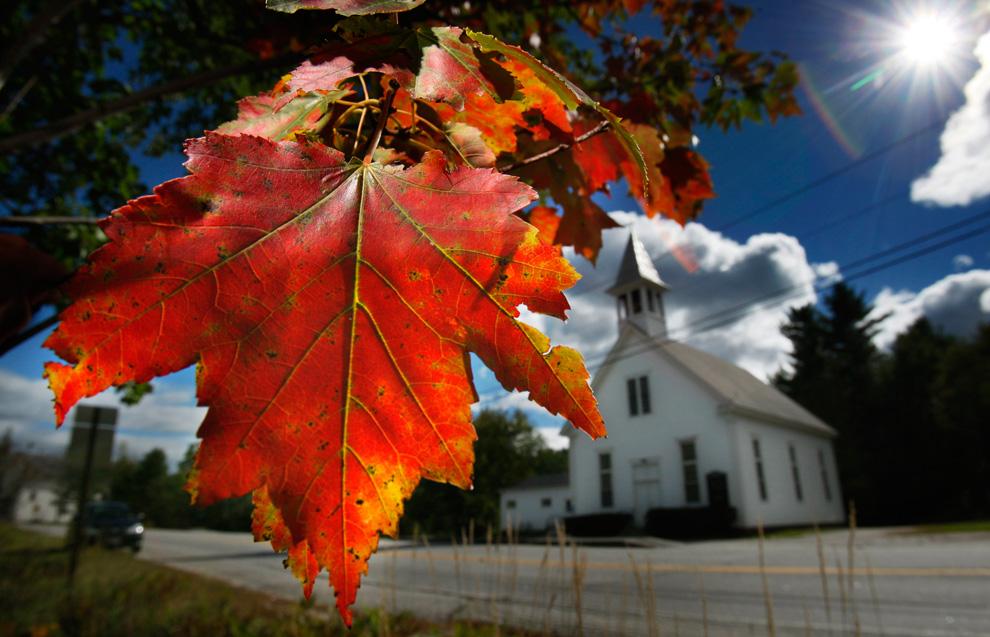 Imágenes del otoño en hemisferio norte