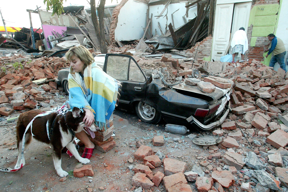 Earthquake in Chile 2010 car dog lady