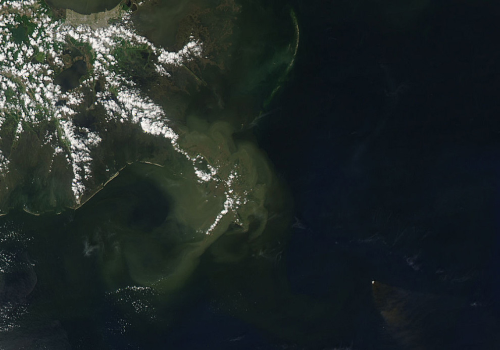 Một số hình ảnh về vụ tràn dầu tại vịnh Mehico>>Khủng khiếp D06_02010111
