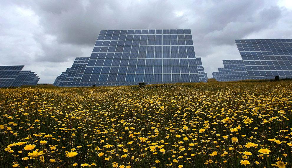 Amareleja Solar station [featured in Boston Globe Earth Day edition]