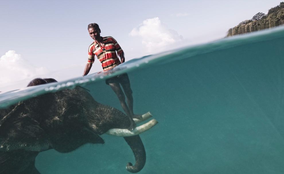 الصور الغريبة التي فازت بجائزة National Giograffic