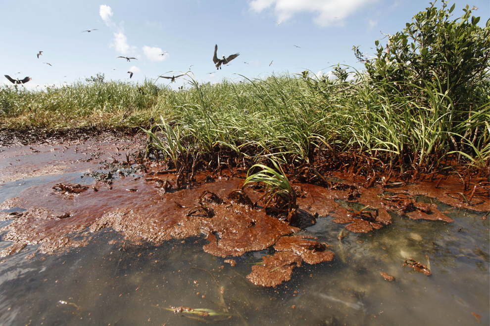 how to clean up small oil spills on land