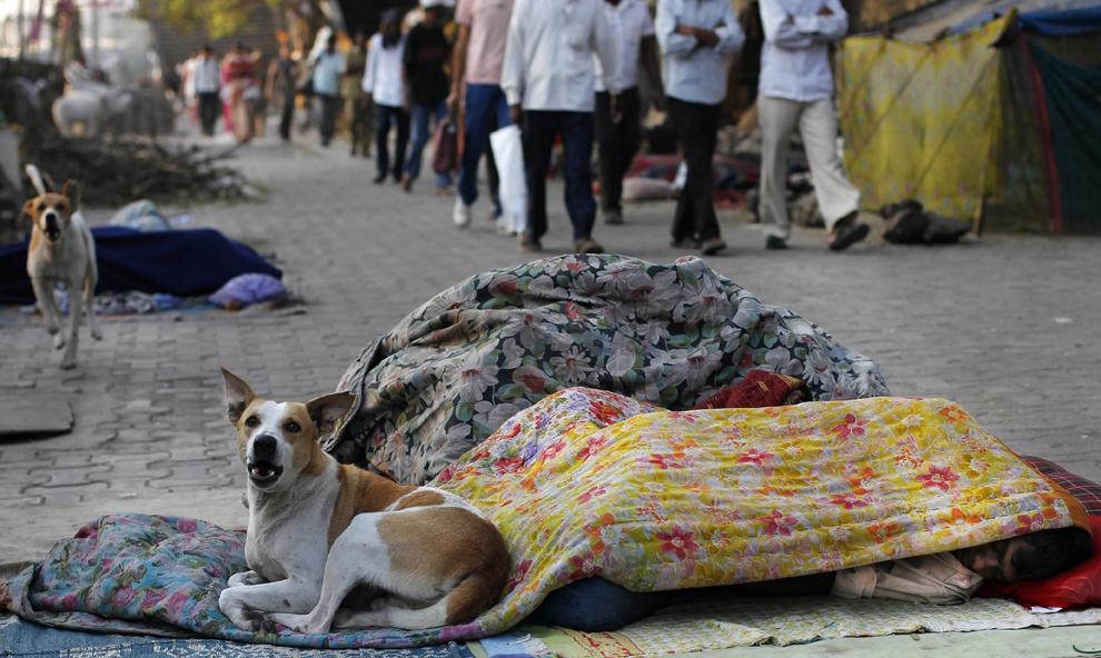 مليار يعيشون الأحياء الفقيرة جميع bp24.jpg