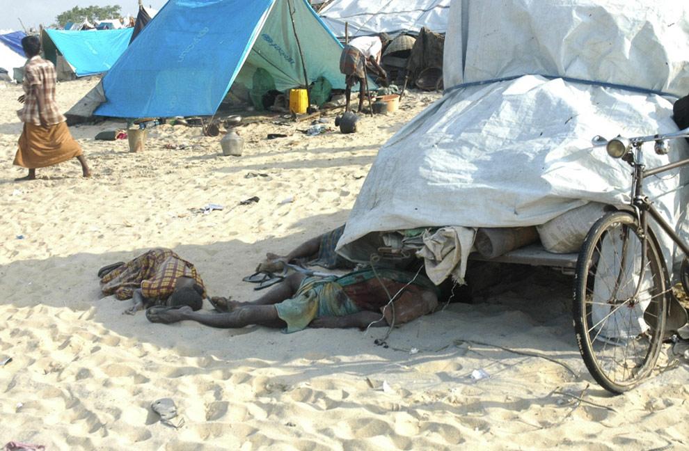 На этом фото, опубликованном 21 апреля 2009 на сайте Tamilnet, который поддерживает «Тамильских тигров»,  лежит семья этнических тамилов, предположительно убитая снарядом, выпущенным правительственными силами безопасности. Зона военных действий в Maaththalan , вблизи Puthukuddyiruppu, Шри-Ланка. Правительство неоднократно отрицало убийства гражданских лиц во время обстрелов. (AP Photo/Tamil Net)