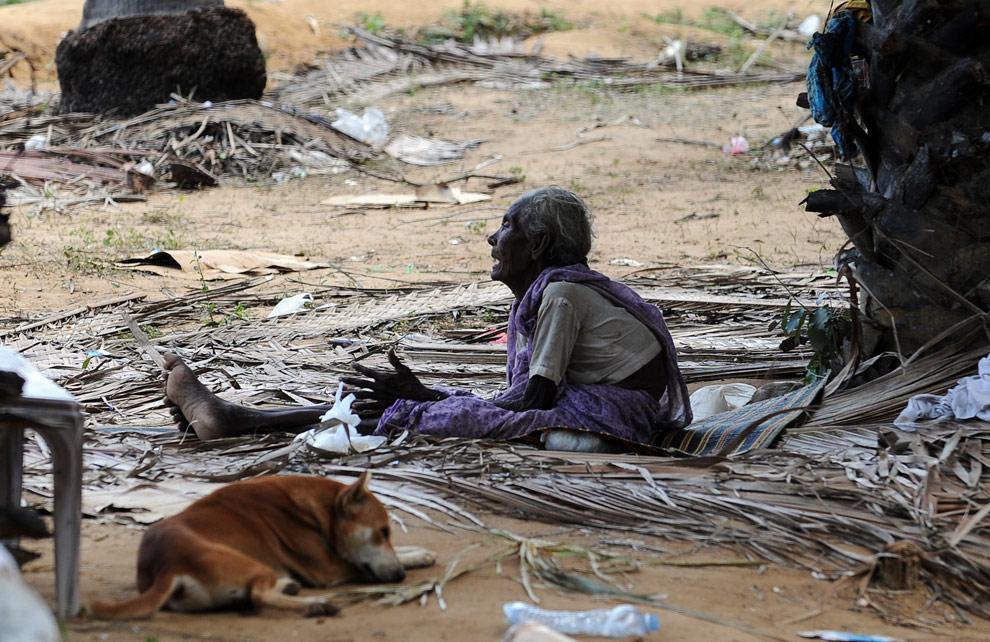 Пожилая тамилка сидит среди руин деревни близ Puthukkudiyiruppu 24 апреля 2009. (PEDRO UGARTE/AFP/Getty Images)