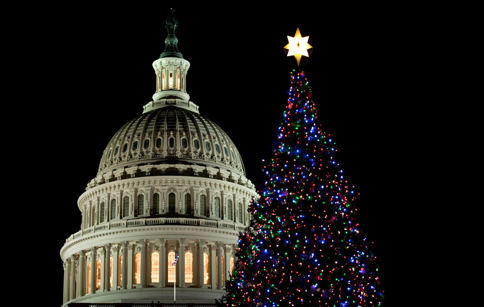 Christmas Tree Lighting In Boston