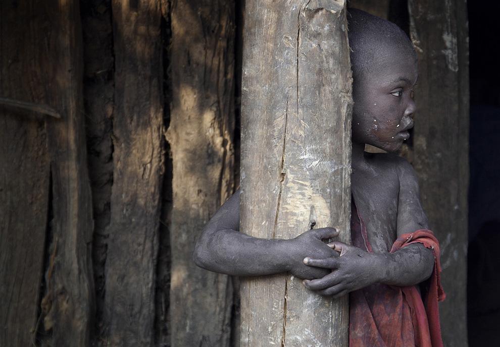 National Geographic проводит традиционный ежегодный конкурс на лучшее фото...