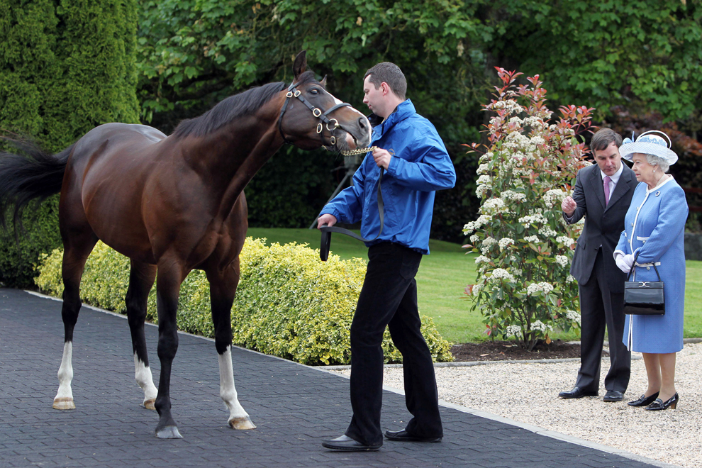 Irish National Stud: An Historic Visit: The Queen In Ireland