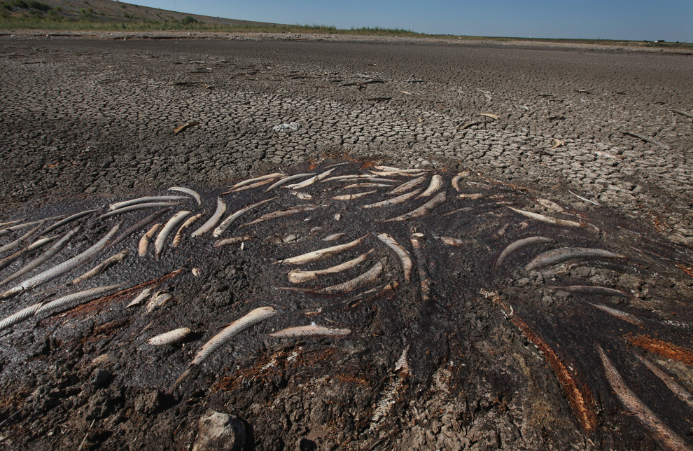 Nexus Images News Stories In Images Texas Drought And